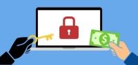 Piratage, quelle attitude à adopter?